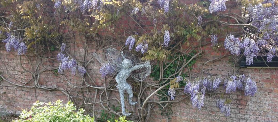 Medium fairies